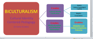 Cultural Identity Stages